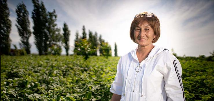 Zuhra's next step is to is enter the bigger market outside the Central Asia region. Photography: Olivier Le Blanc/USAID